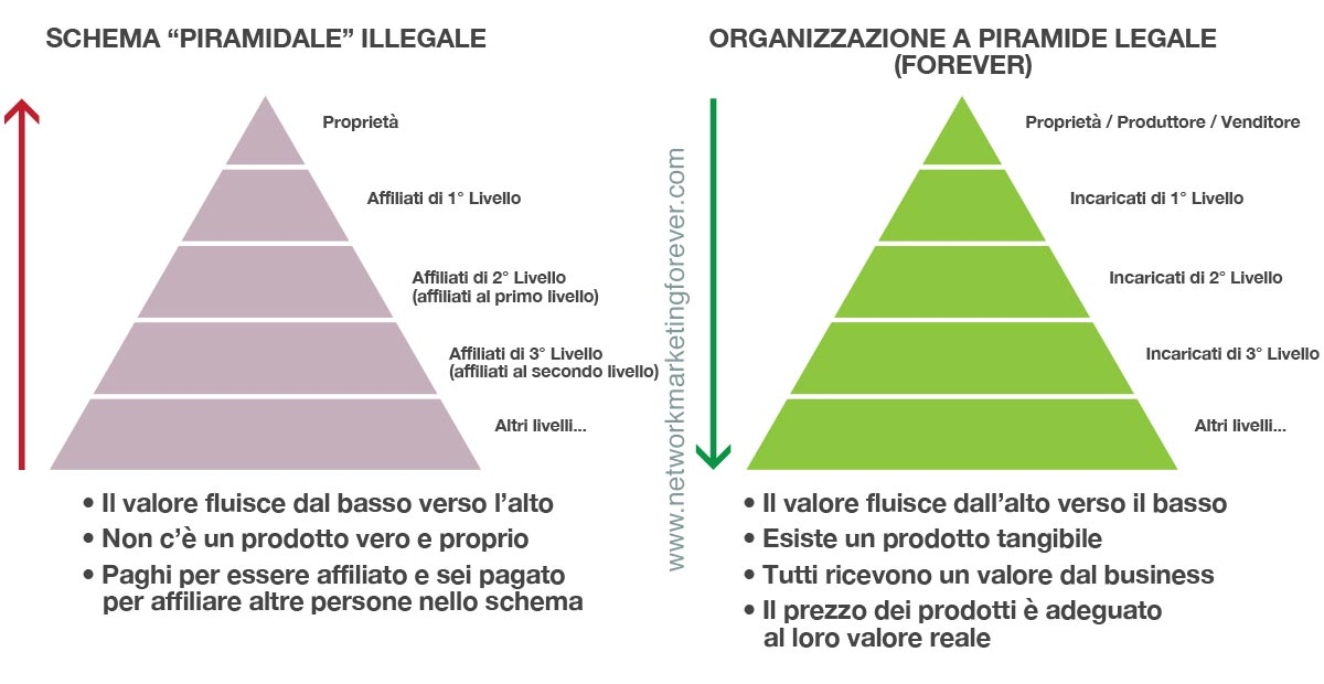 come-lavorare-e-guadagnare-con-forever-living-network-marketing-piramidale